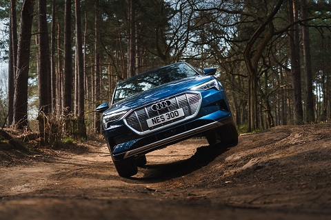 Exterior front view of a blue Audi e-tron on trees background